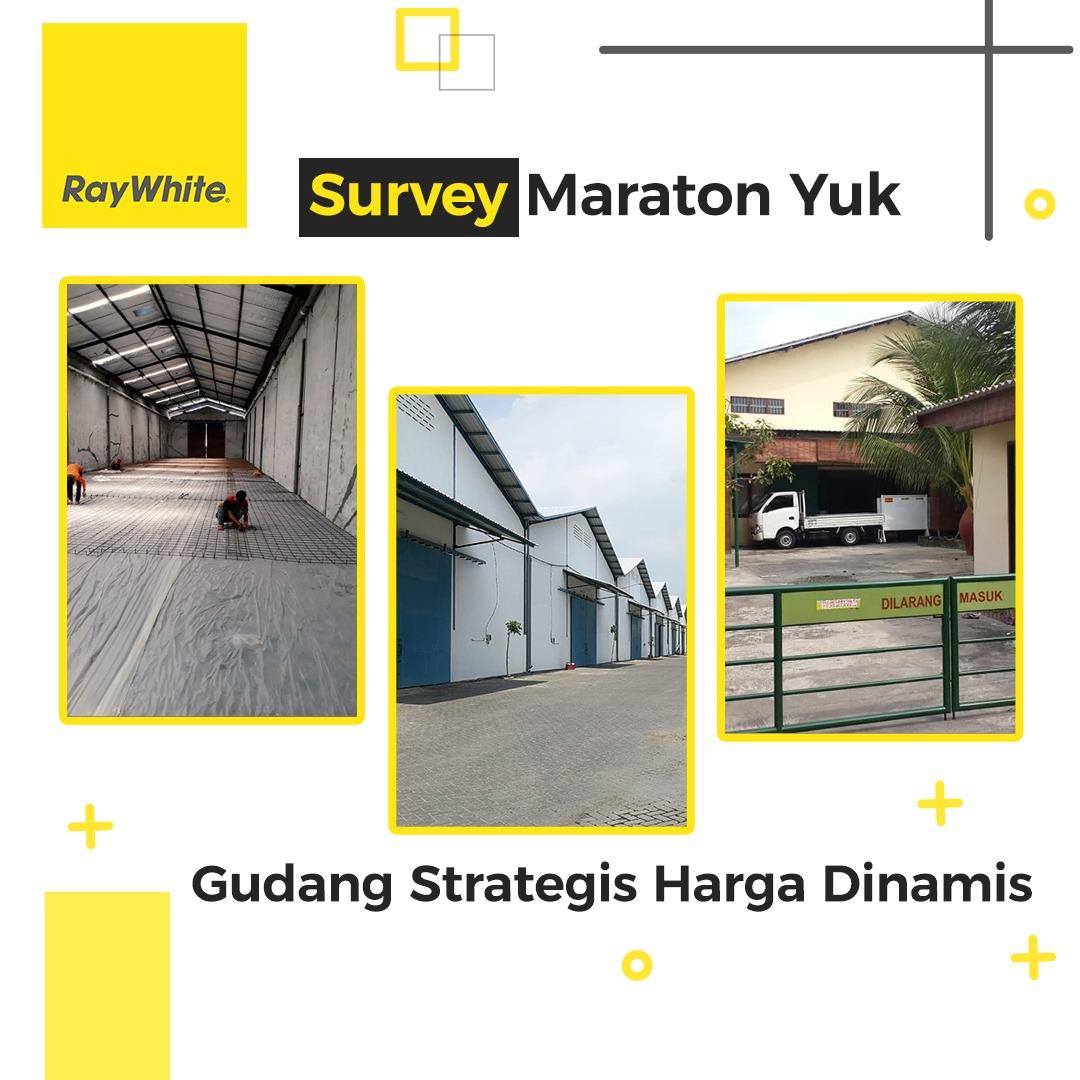Survey Maraton Yuuk! Gudang Strategis Harga Dinamis